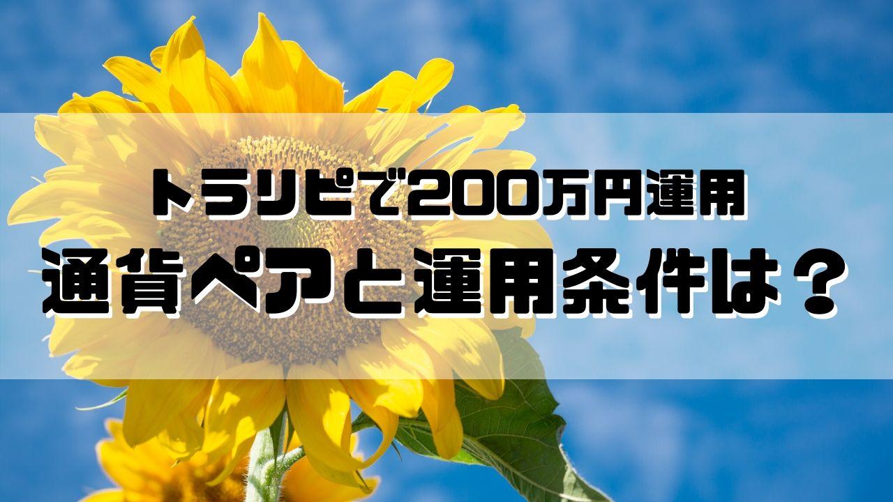 トラリピで200万円運用。通貨ペアと運用条件は?