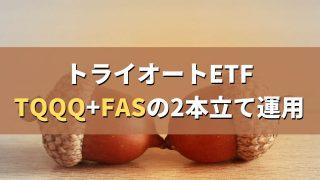 トライオートETF。TQQQ+FASの2本立て運用